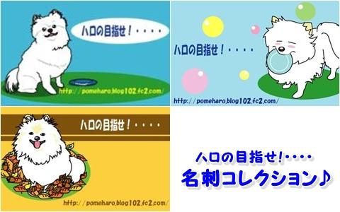 20121123-haromei.jpg