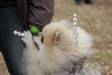 20121203-IMG_4739.jpg