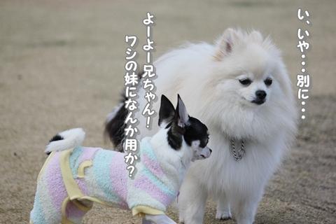 20121213-IMG_5406.jpg
