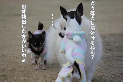 20121213-IMG_5407.jpg