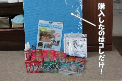 IMG_4376-20120506.jpg