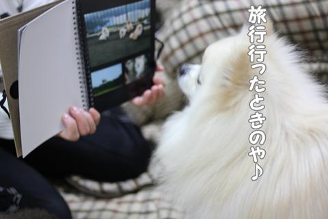 IMG_4401-20120506.jpg