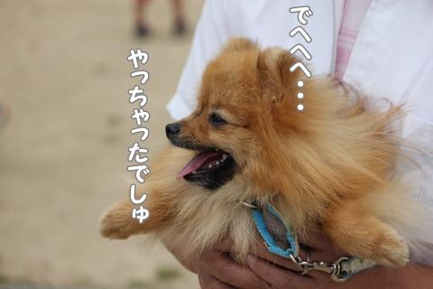 IMG_5144-20120522.jpg