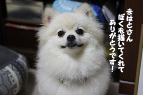 IMG_7196-20120708.jpg