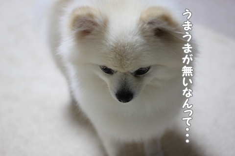 IMG_7198-20120712.jpg