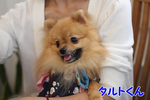 IMG_7595-20120716.jpg