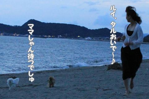 IMG_7825-20120718.jpg