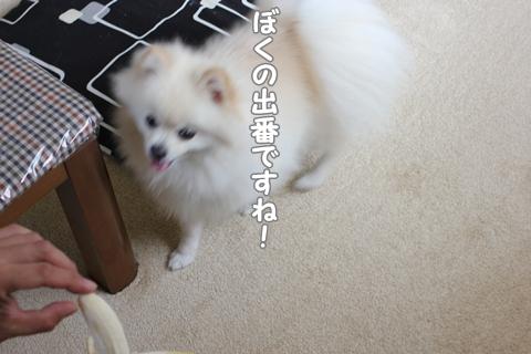IMG_8126-20120726.jpg
