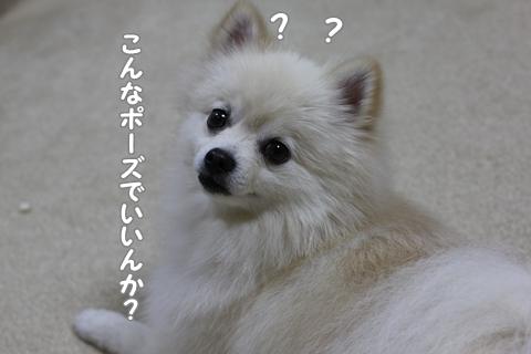IMG_9788-20120908.jpg