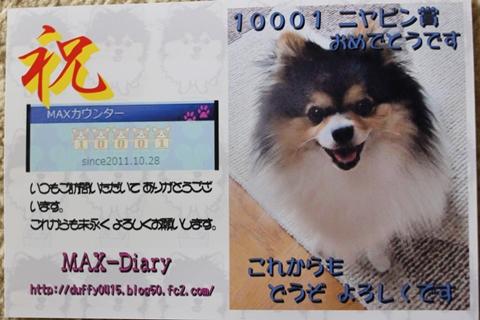 IMG_9800-20120909.jpg