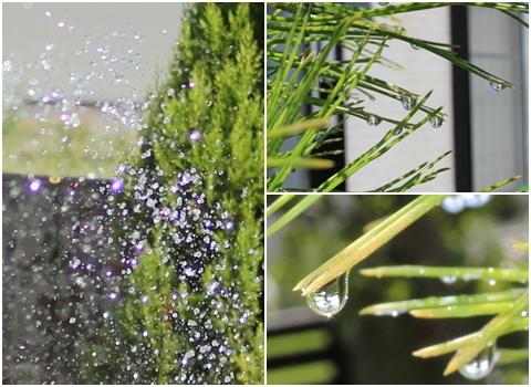 mizusibuki-20120903-20120907.jpg