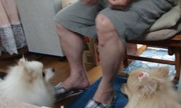 CIMG2434.jpg