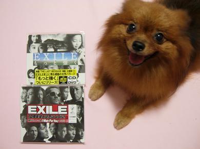 EXILE 2CD + りおん