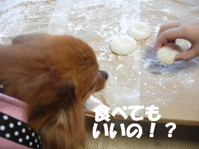食べてもいいの!?