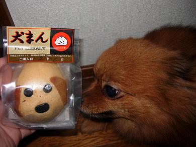 犬まん(茶犬鶏チーズまん)