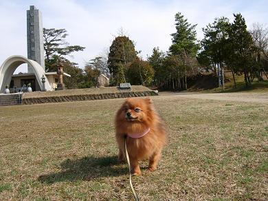 一の谷公園でお散歩