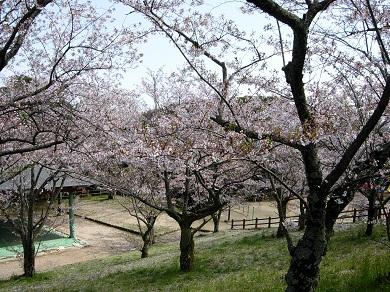 愛宕山公園