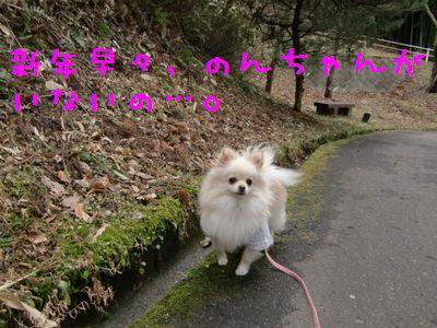 CIMG3273.jpg