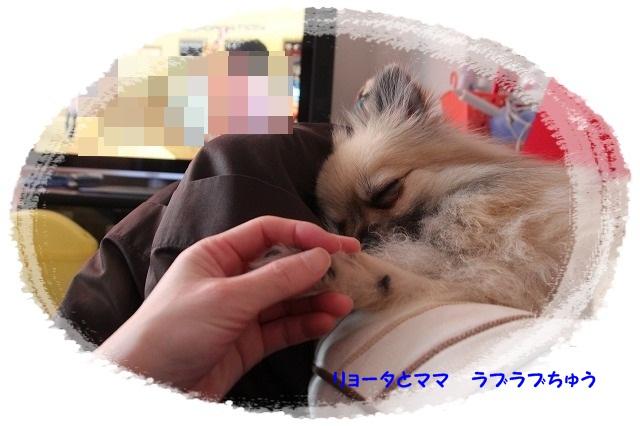 042_20120122182728.jpg