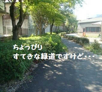 DSC01878.jpg