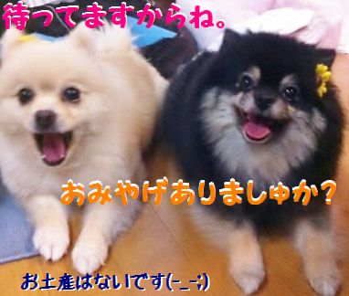 IMG_1364-1.jpg