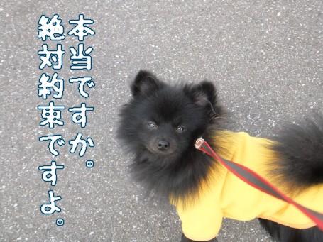 20110302_8.jpg