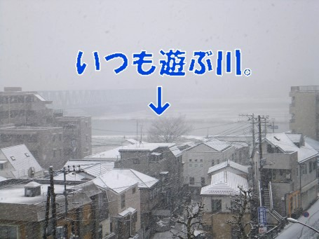 20110307_2.jpg