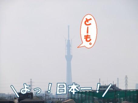20110308_5.jpg