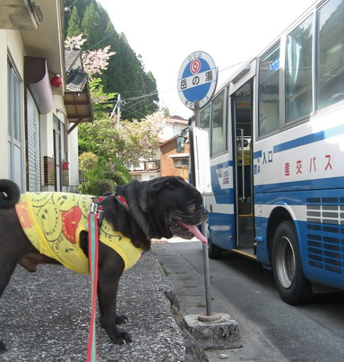 4バス待ち