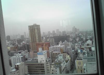 20101114-3.jpg