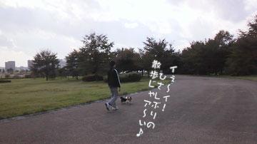 2010101611360000.jpg