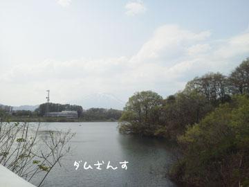 NEC_0007_20120509155214.jpg