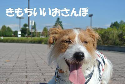 007_convert_20121019111157.jpg