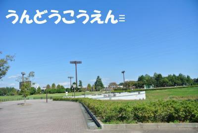008_convert_20121019111245.jpg