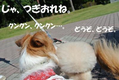 012_convert_20121019111540.jpg