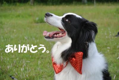 052_convert_20120611151652.jpg