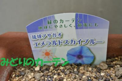 079_convert_20120710104226.jpg