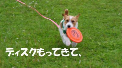 087_convert_20120611153055.jpg