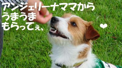 089_convert_20120611153319.jpg