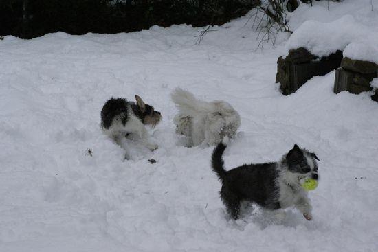 neige201304.jpg