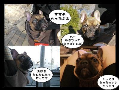 2011_01_29_26.jpg