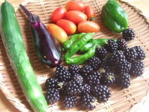 0011野菜1
