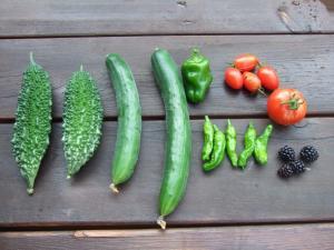 0021野菜