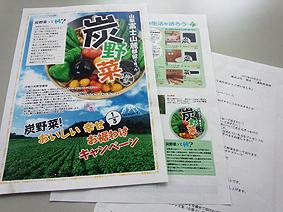 炭野菜チラシ20121208