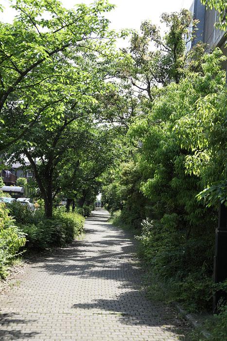 1205京成_遊歩道01