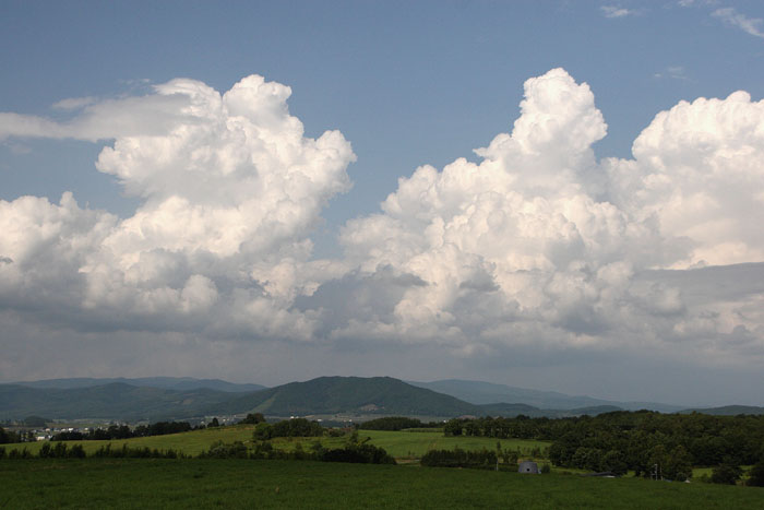 1108夏の雲01