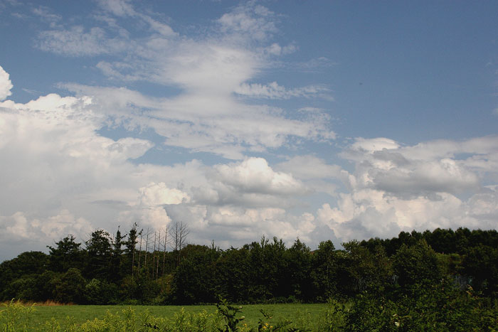 1108夏の雲02
