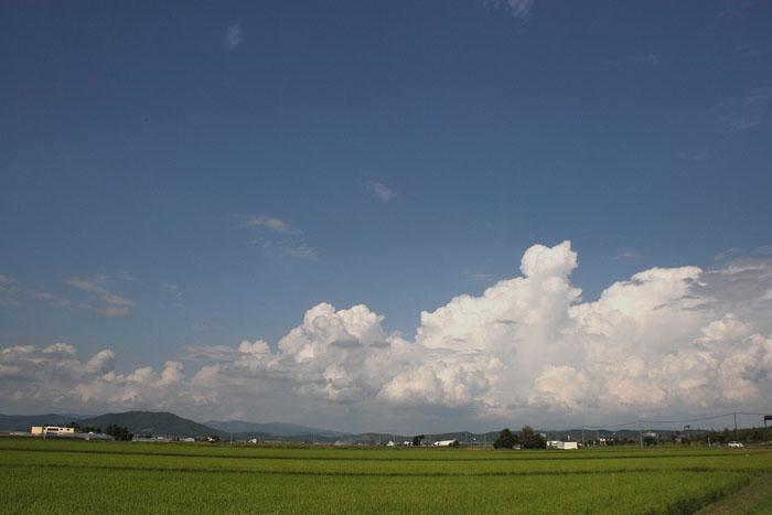 1108夏の雲03