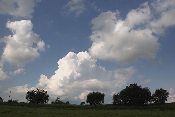 1108夏の雲04
