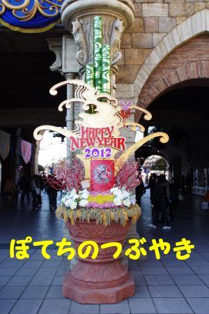 20111229 Sea門松
